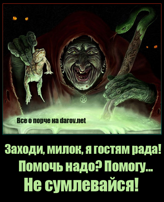 http://darov.net/images/porcha-prikol1.jpg