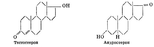 Формулы - тестостерон и андростерон